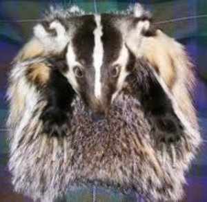 If the badger views his own shadow after he emerges from your crotch, you get 6 more months of 'chastity'.....